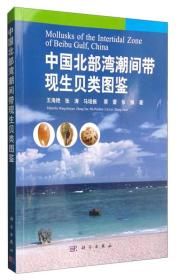 中国北部湾潮间带现生贝类图鉴