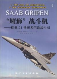 """""""鹰狮""""战斗机:瑞典21世纪多用途战斗机"""