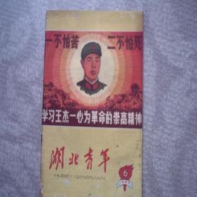 湖北青年 1965年 学王杰封面 周朱林董陆题词