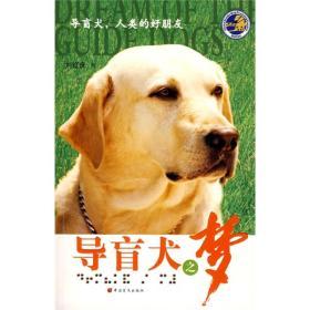 导盲犬之梦