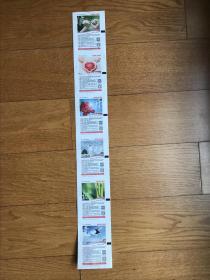 彩票<公益体彩音乐人生》(6枚一套6种彩色图未打印裸票连票)