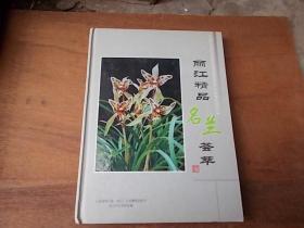 丽江精品名兰荟萃