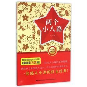 无障碍阅读丛书:红色经典特辑-两个小八路