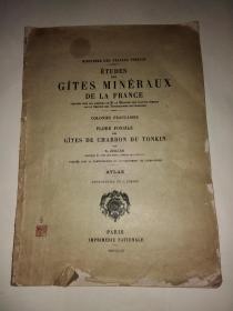 ETUDES DES GITES MINERAUX DE LA FRANCE FLORE FOSSILE DES  GITES DE CHARBON DU TONKIN ATLAS