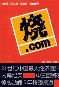 烧.com:21世纪中国最大经济泡沫内幕纪实