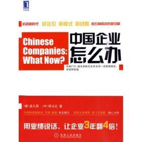 华章经管:中国企业怎么办:目标、杆杆对比和创新战略等的应用和实践