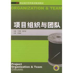 21世纪项目管理系列规划教材:项目组织与团队