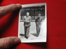 老照片毛主席和林在一起1枚