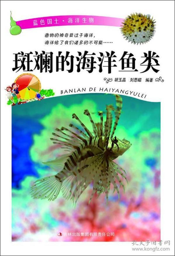 斑斓的海洋鱼类