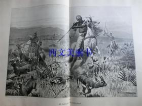 【现货 包邮】1890年巨幅木刻版画《狩猎羚羊》(gazellenjagd)尺寸约56*41厘米  (货号 18018)