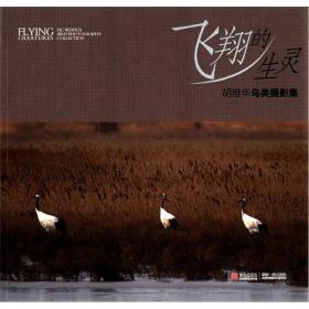 飞翔的生灵:胡维华鸟类摄影集