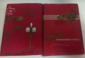 手抄中医笔记本两本(全部写满)内附大量中医经验、验方