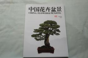 中国花卉盆景2018年1月下本月刊(未翻阅)