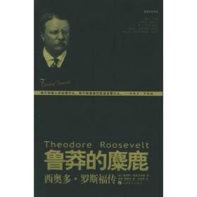 鲁莽的麋鹿:西奥多·罗斯福传——美国总统书系