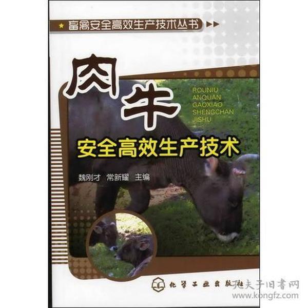 畜禽安全高效生产技术丛书--肉牛安全高效生产技术