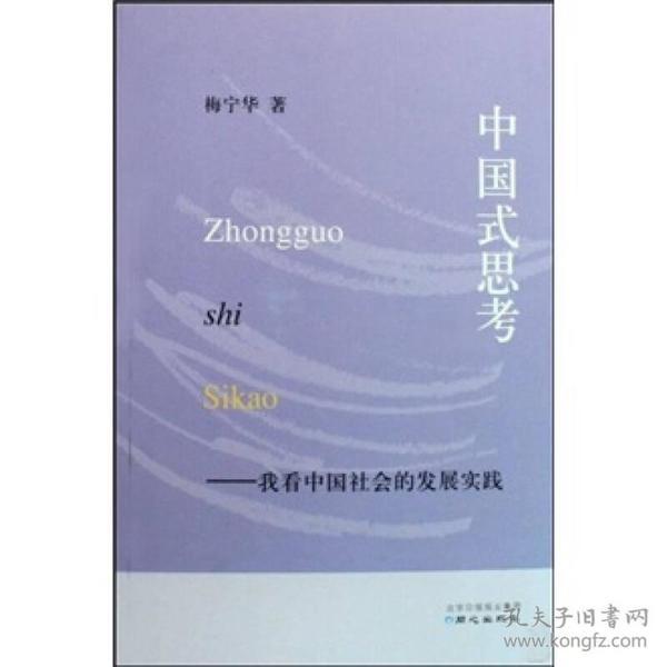 中国式思考:我看中国社会的发展实践