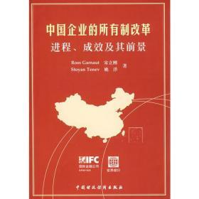中国企业的所有制改革进程、成效及其前景