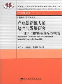 港澳珠三角区域研究(产业经济类)·产业创新能力的培养与发展研究:珠江三角洲的发展路径和趋势