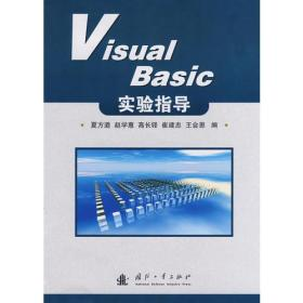 Visual Basic实验指导