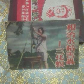连环画 科学教育电影画册 根治水稻害虫----三化螟  (常识 科学)1954年一版1956年2印