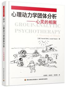 心理动力学团体分析——心灵的相聚(万千心理)