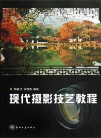 现代摄影技艺教程