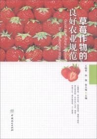 草莓作物的良好农业规范