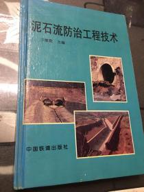 泥石流防治工程技术