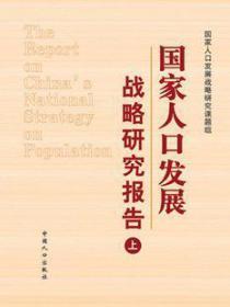 国家人口发展战略研究报告(上中下)