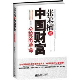 张茉楠说中国财富分配的革命