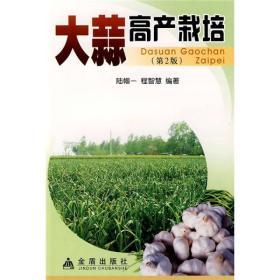 大蒜高产栽培