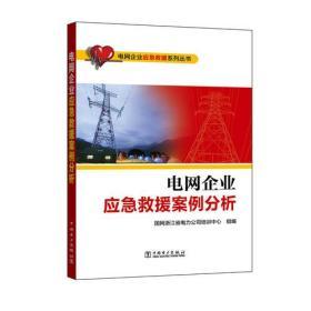电网企业应急救援系列丛书 电网企业应急救援案例分析