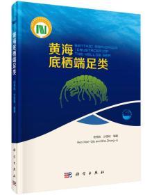 黄海底栖端足类