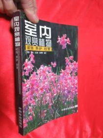 室内观赏植物——装饰、养护、欣赏        【小16开】