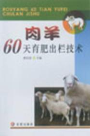 肉羊60天育肥出栏技术H