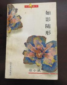 1995 如影随形 徐小斌