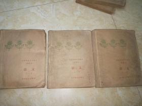 盲童学校小学课本 试用本 语文【第七,八,九册】三本