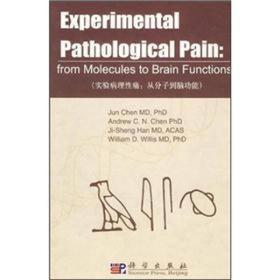实验病理性痛:从分子到脑功能