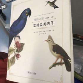 发现最美的鸟