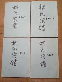 嵇氏族谱(1—4册)