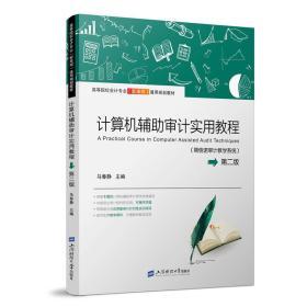 计算机辅助审计实用教程(鼎信诺审计教学系统)