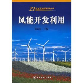 风能开发利用——21世纪可持续能源丛书