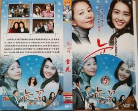 DVD韩国电视剧《雪花》主演:李喜爱、李在龙、金基范、李灿
