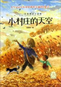 少年励志小说馆:小村庄的天空