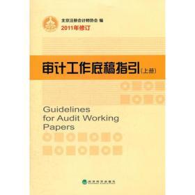 审计工作底稿指引(上下册)