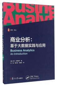 商业分析:基于大数据实践与应用