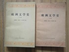 欧洲文学史 上下两卷