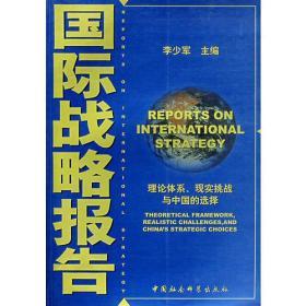 国际战略报告
