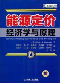 能源定价经济学与原理