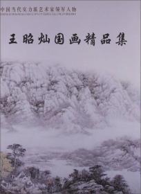 王昭灿国画精品集